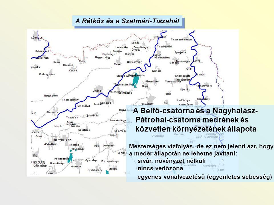 A Belfő-csatorna és a Nagyhalász- Pátrohai-csatorna medrének és