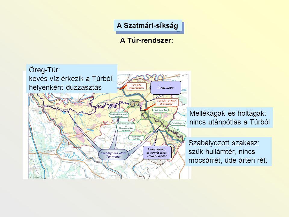 A Szatmári-síkság A Túr-rendszer: Öreg-Túr: kevés víz érkezik a Túrból, helyenként duzzasztás. Mellékágak és holtágak: