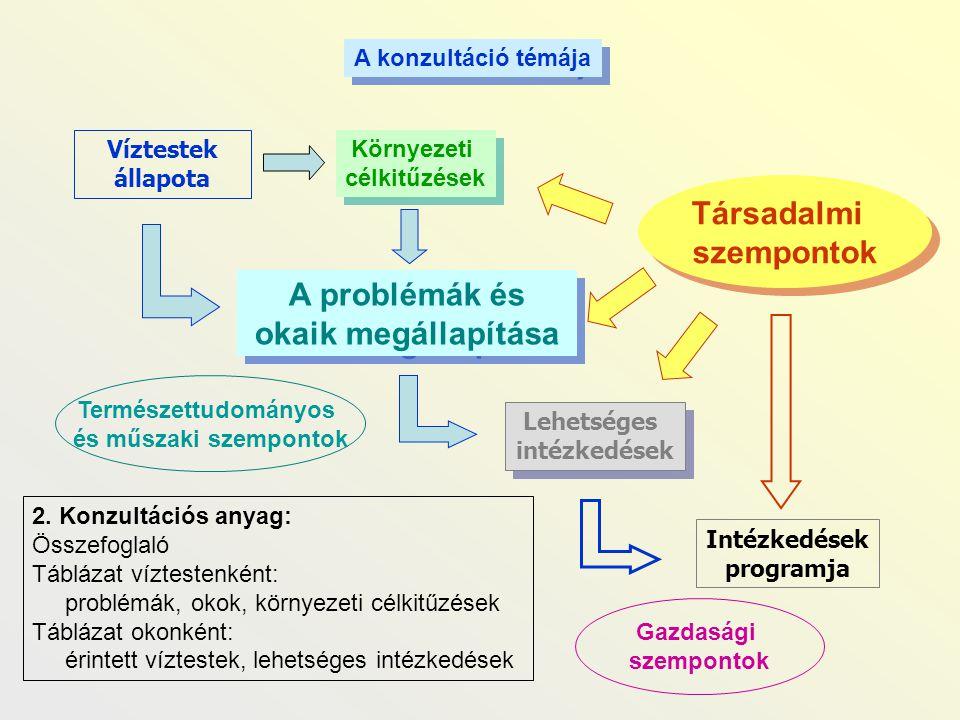 A problémák és okaik megállapítása
