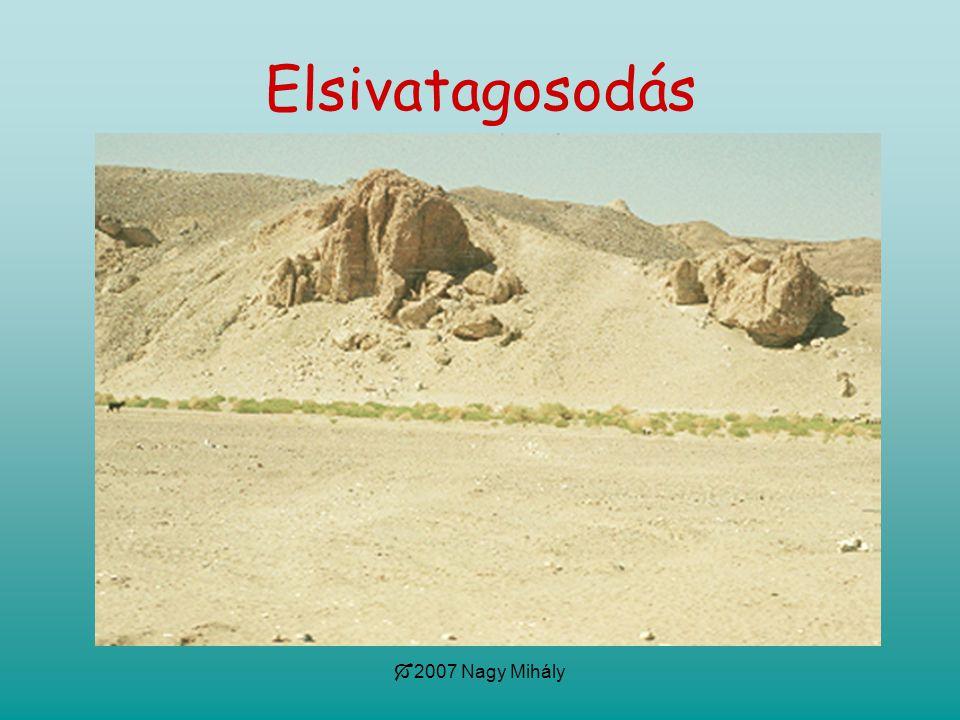 Elsivatagosodás 2007 Nagy Mihály