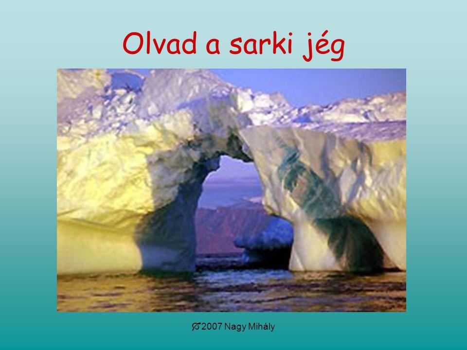 Olvad a sarki jég 2007 Nagy Mihály
