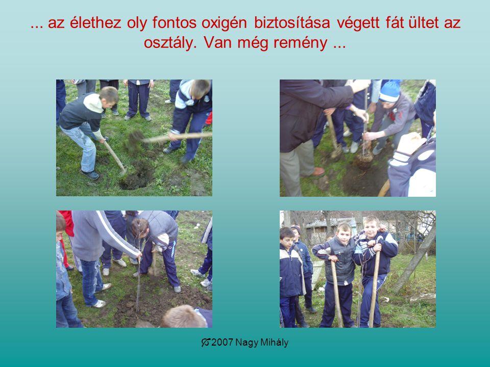 az élethez oly fontos oxigén biztosítása végett fát ültet az osztály