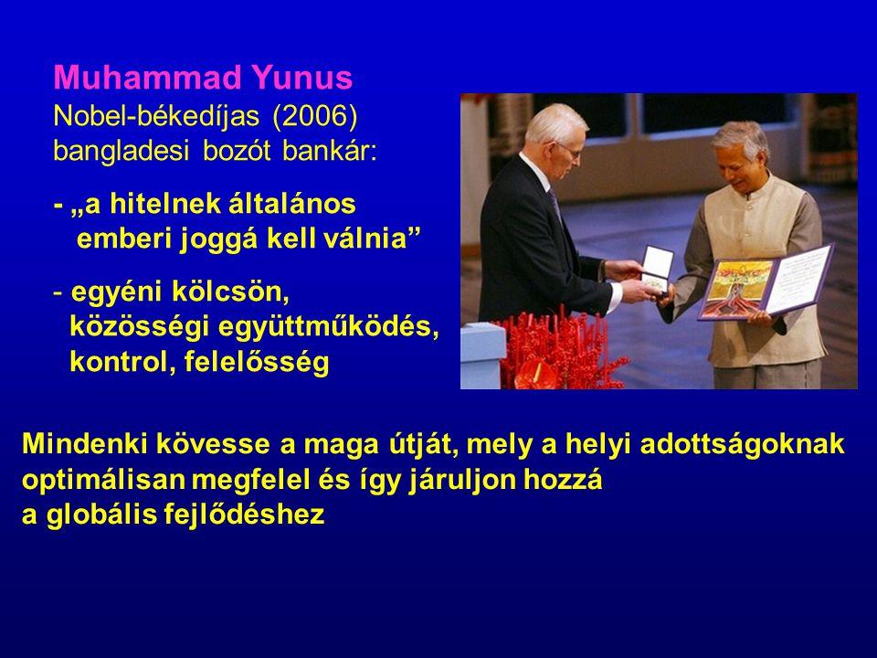 Muhammad Yunus Nobel-békedíjas (2006) bangladesi bozót bankár: