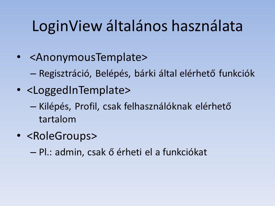 LoginView általános használata