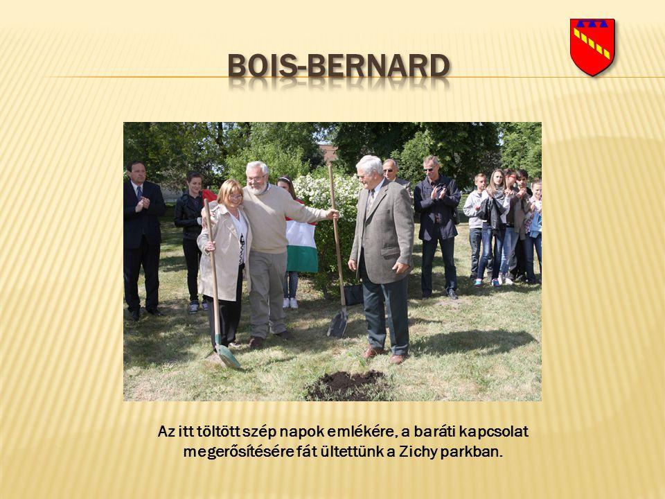 Bois-bernard Az itt töltött szép napok emlékére, a baráti kapcsolat megerősítésére fát ültettünk a Zichy parkban.