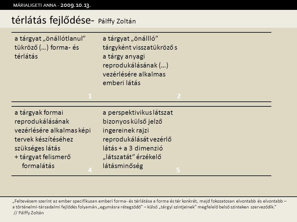 térlátás fejlődése- Pálffy Zoltán