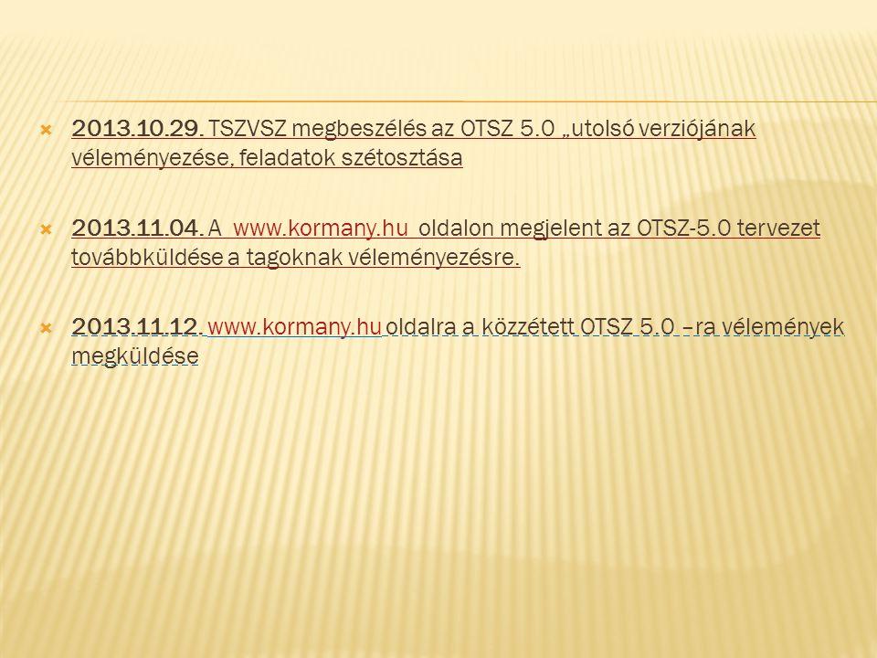 2013. 10. 29. TSZVSZ megbeszélés az OTSZ 5