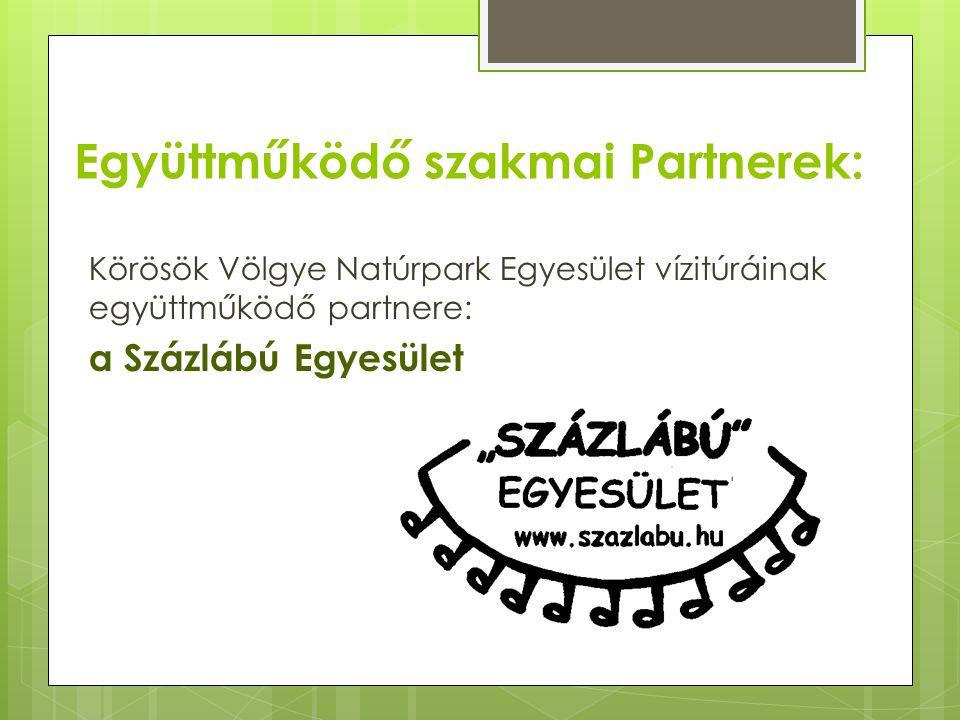 Együttműködő szakmai Partnerek:
