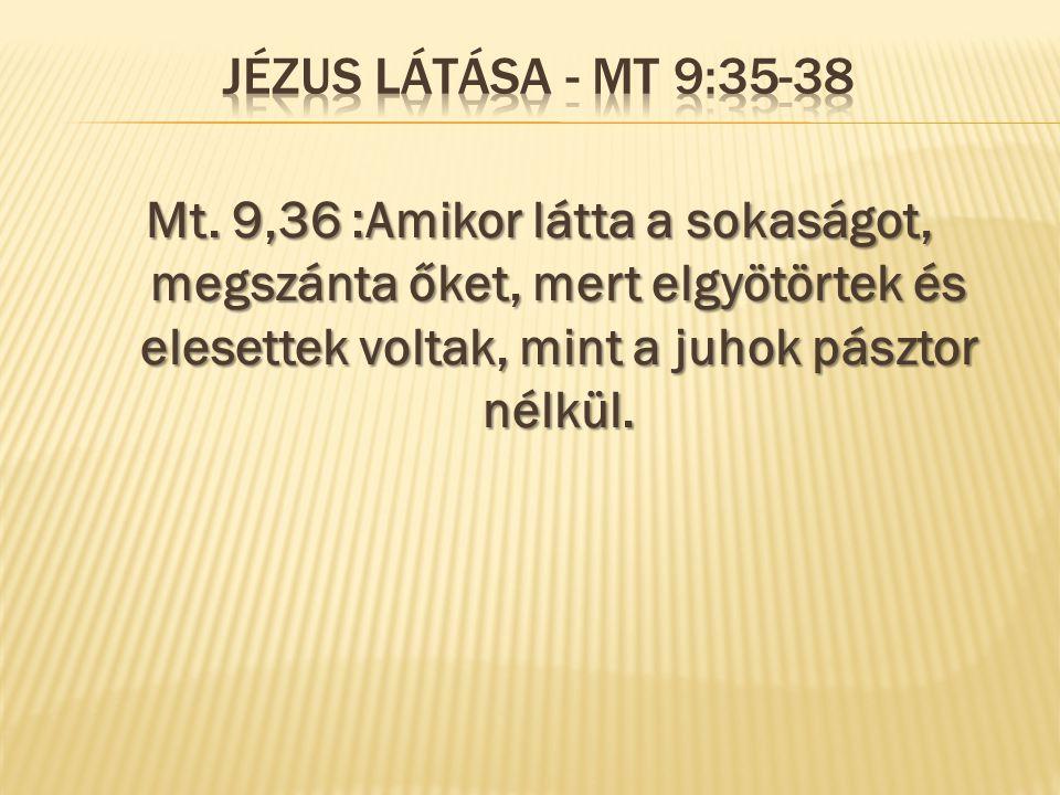 Jézus látása - Mt 9:35-38 Mt.