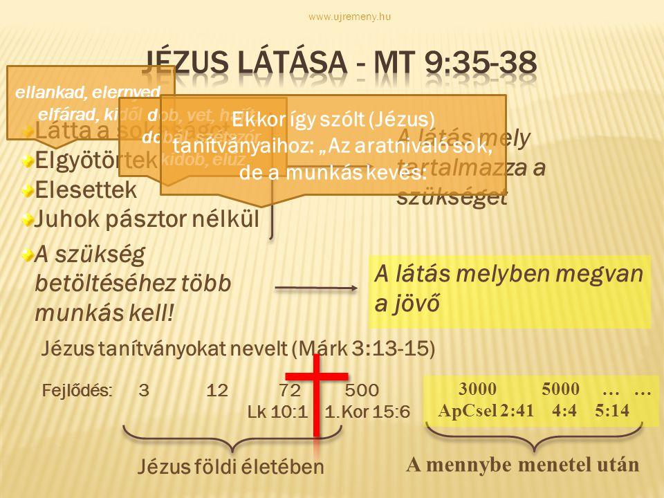 Jézus látása - Mt 9:35-38 Látta a sokaságot Elgyötörtek