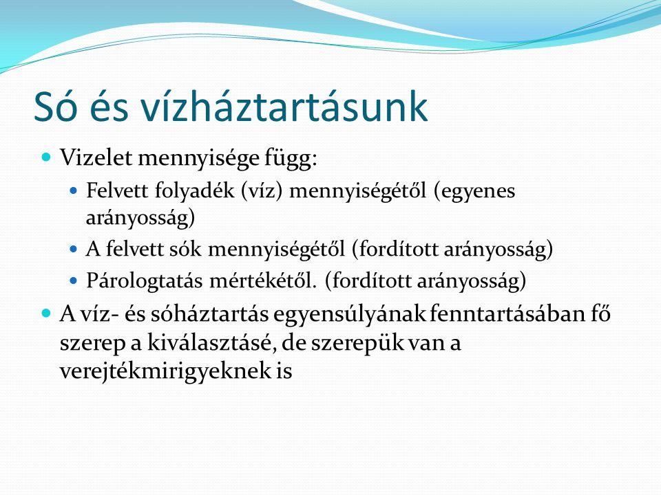 Só és vízháztartásunk Vizelet mennyisége függ: