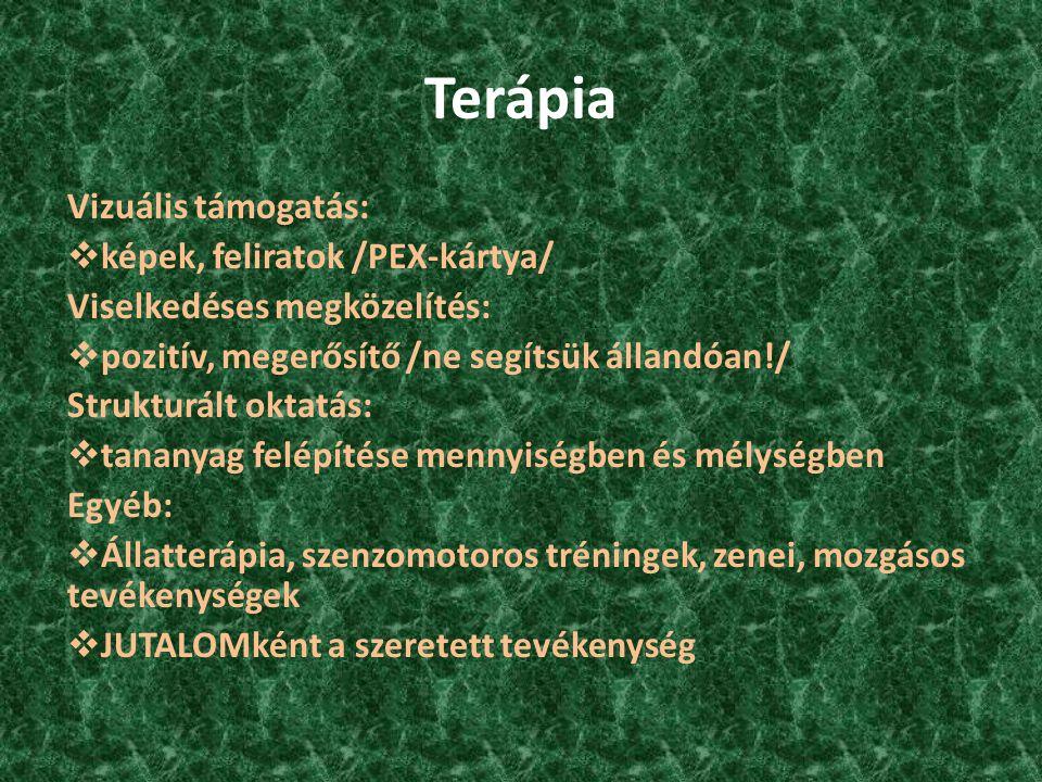 Terápia Vizuális támogatás: képek, feliratok /PEX-kártya/