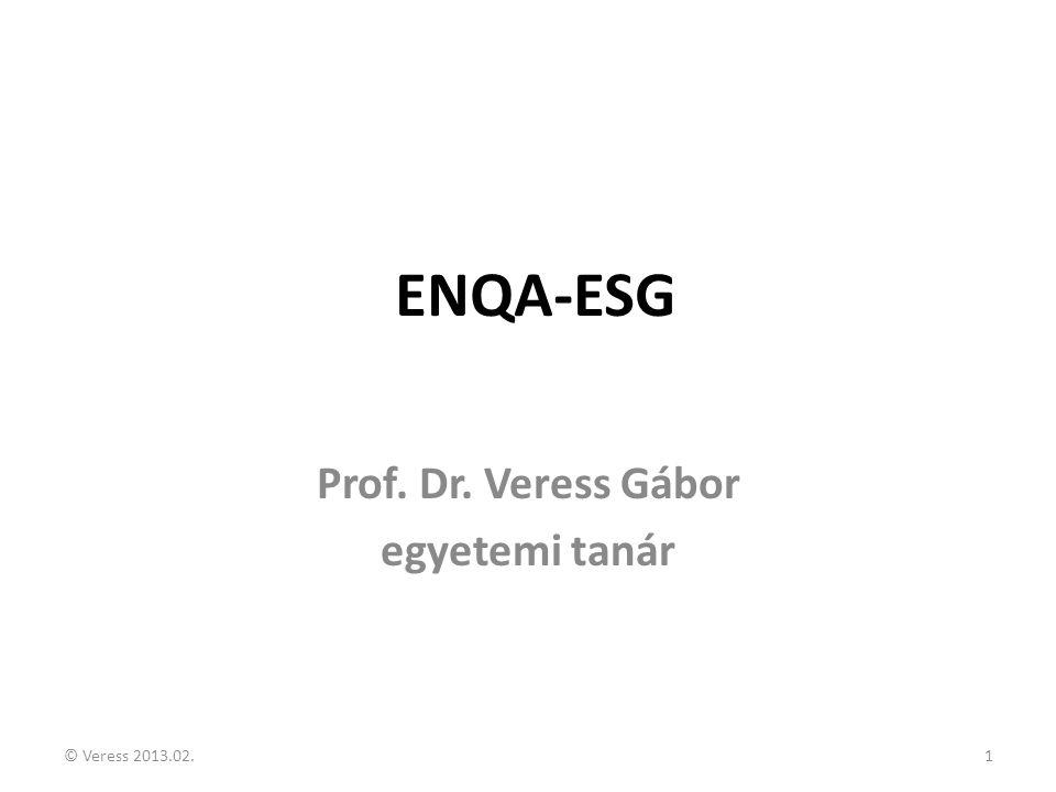 Prof. Dr. Veress Gábor egyetemi tanár