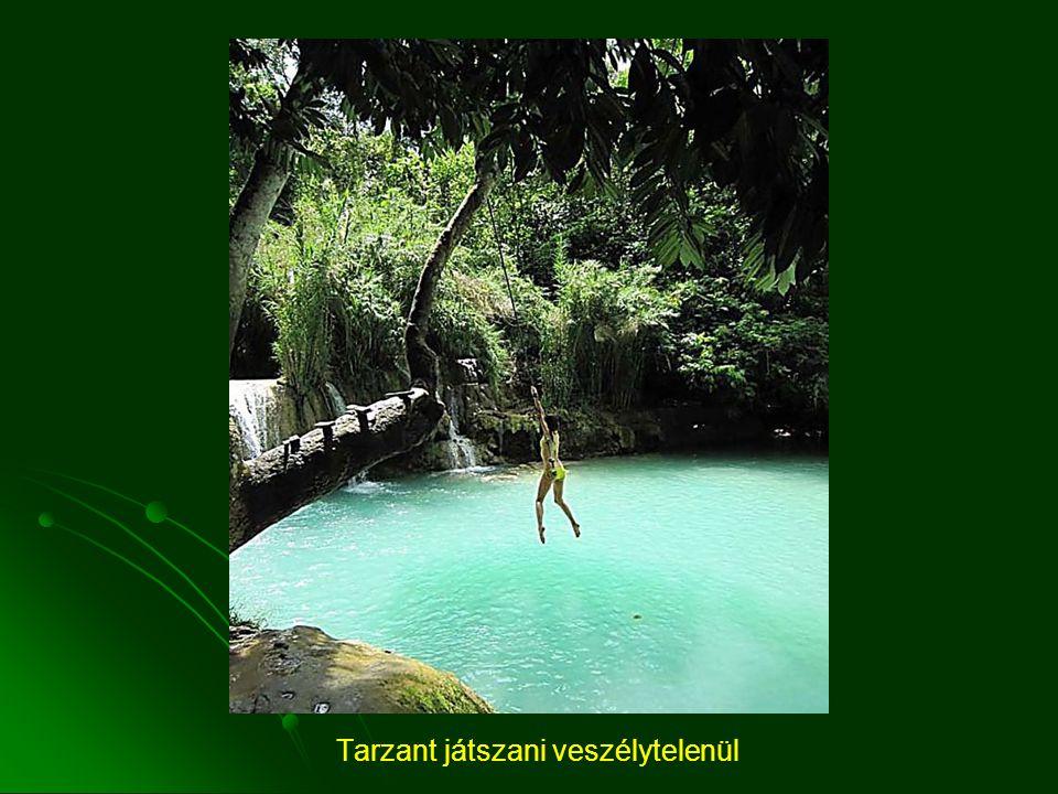 Tarzant játszani veszélytelenül