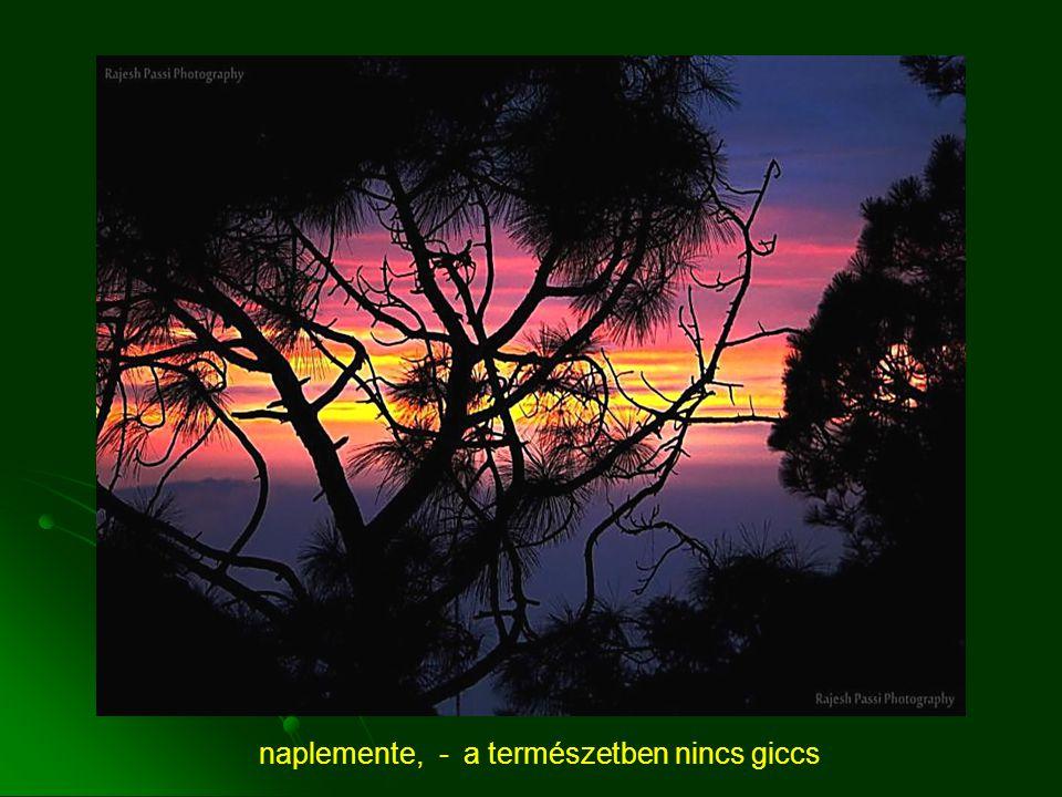 naplemente, - a természetben nincs giccs