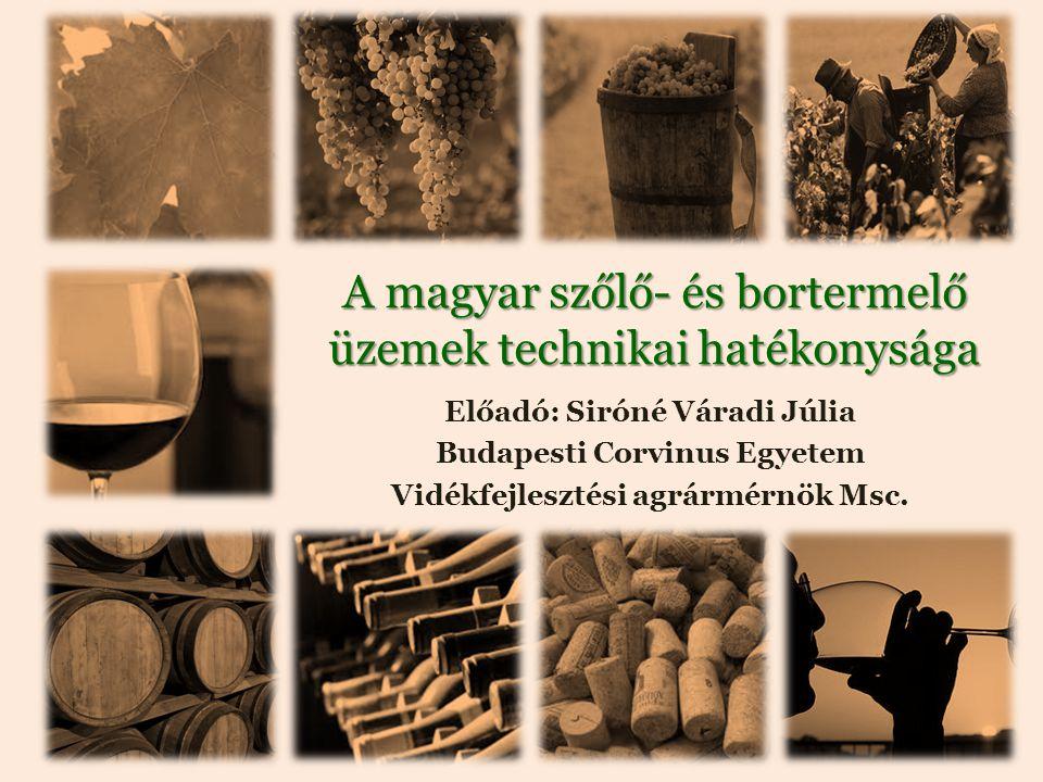 A magyar szőlő- és bortermelő üzemek technikai hatékonysága