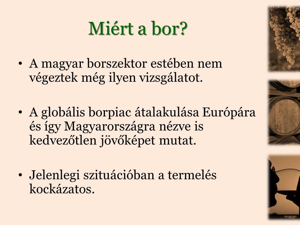 Miért a bor A magyar borszektor estében nem végeztek még ilyen vizsgálatot.