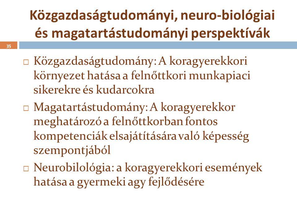 Közgazdaságtudományi, neuro-biológiai és magatartástudományi perspektívák