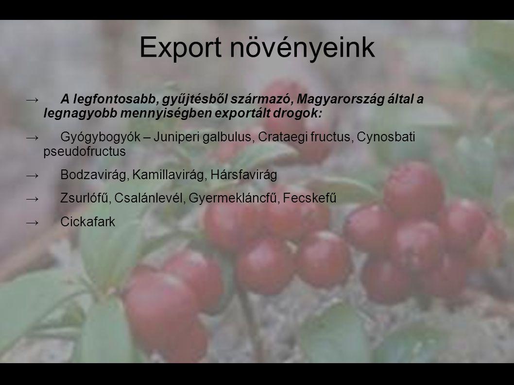Export növényeink