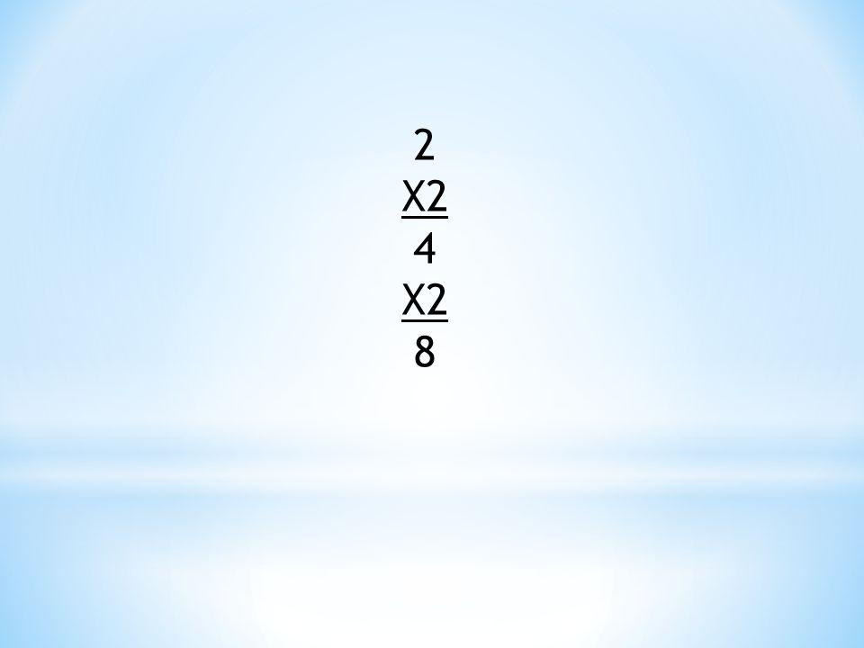 2 X2 4 8
