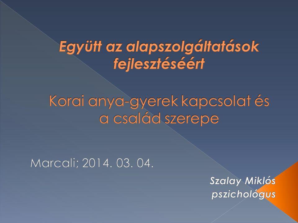 Marcali; 2014. 03. 04. Szalay Miklós pszichológus