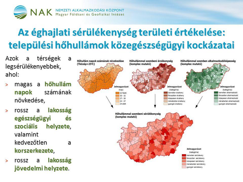 Az éghajlati sérülékenység területi értékelése: települési hőhullámok közegészségügyi kockázatai
