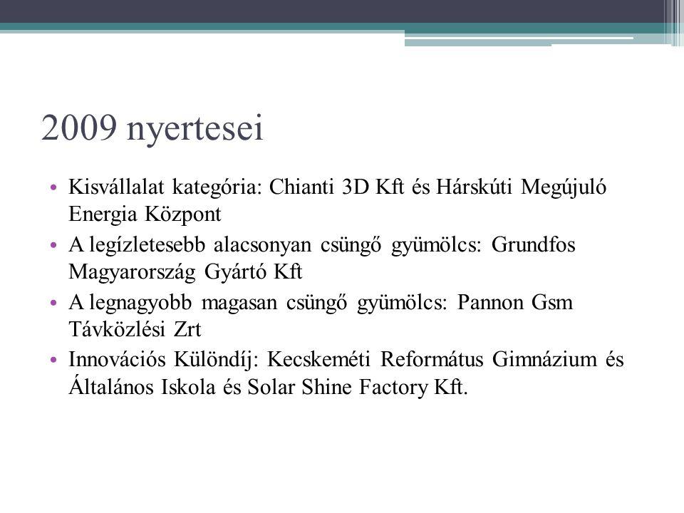 2009 nyertesei Kisvállalat kategória: Chianti 3D Kft és Hárskúti Megújuló Energia Központ.