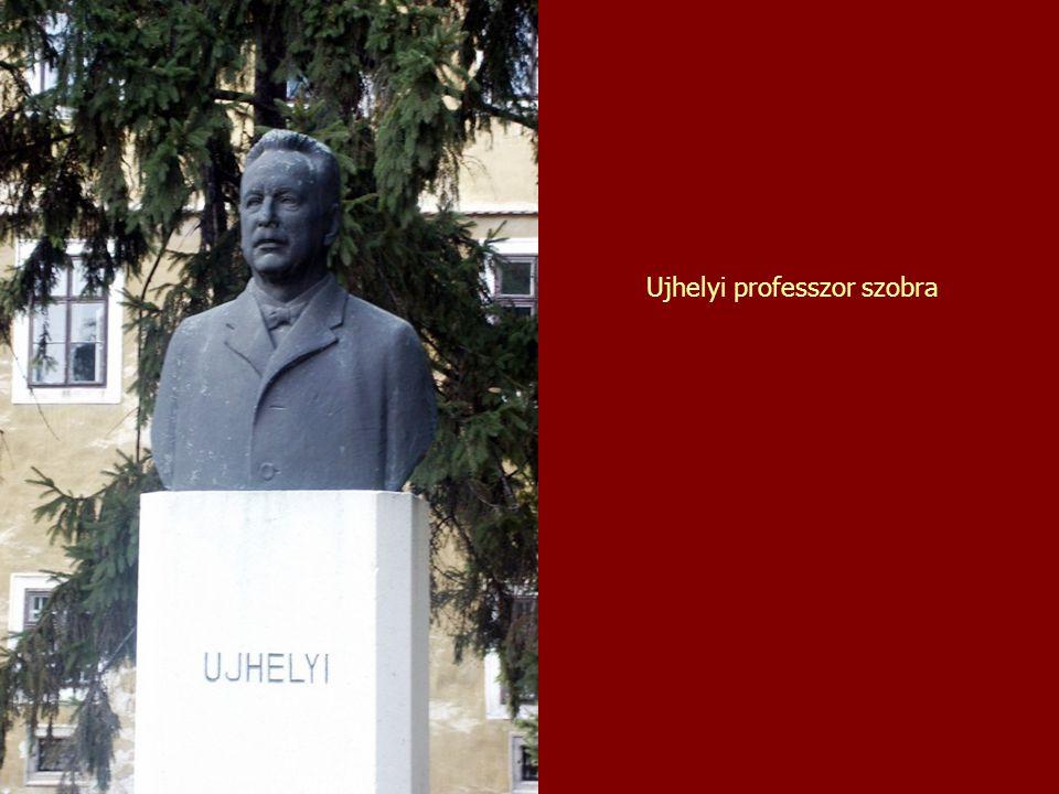 Ujhelyi professzor szobra