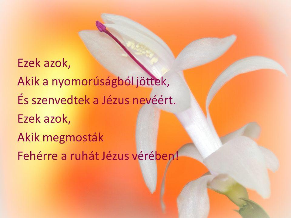Ezek azok, Akik a nyomorúságból jöttek, És szenvedtek a Jézus nevéért.
