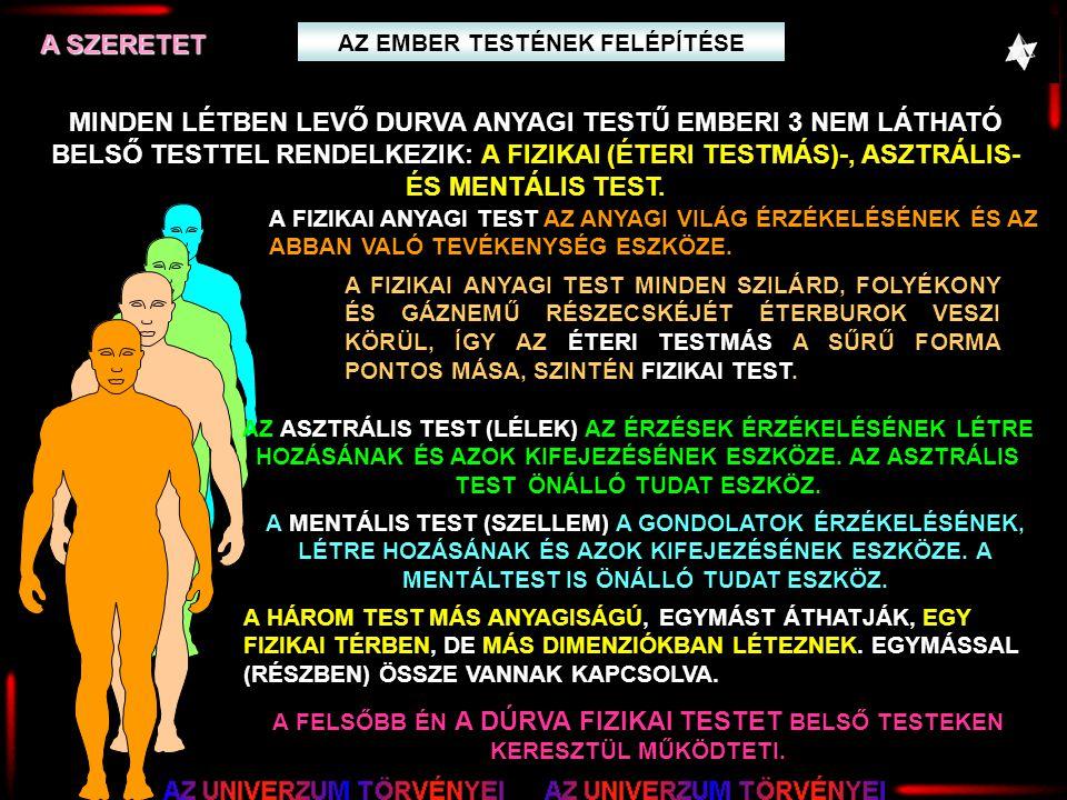 AZ EMBER TESTÉNEK FELÉPÍTÉSE