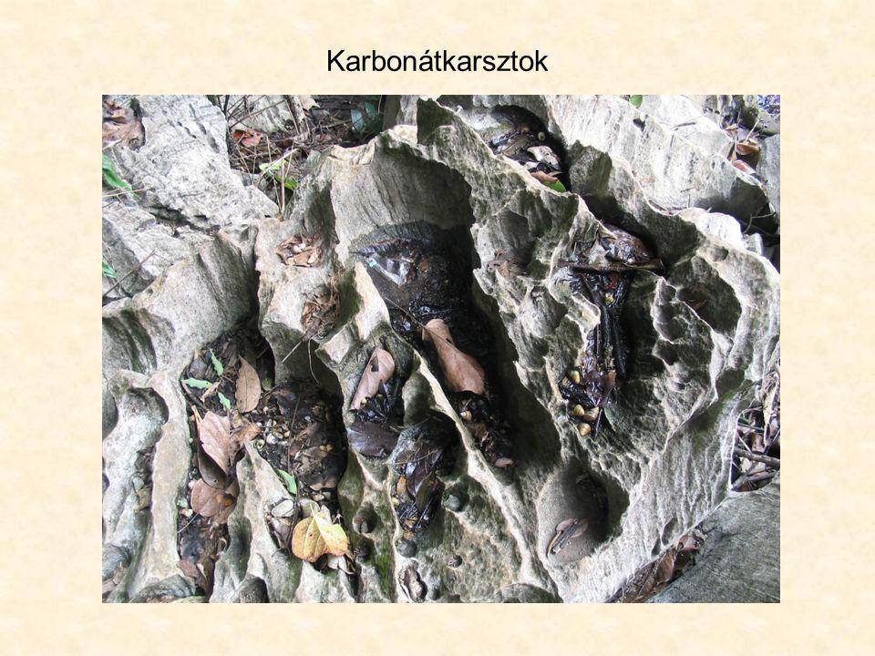 Karbonátkarsztok