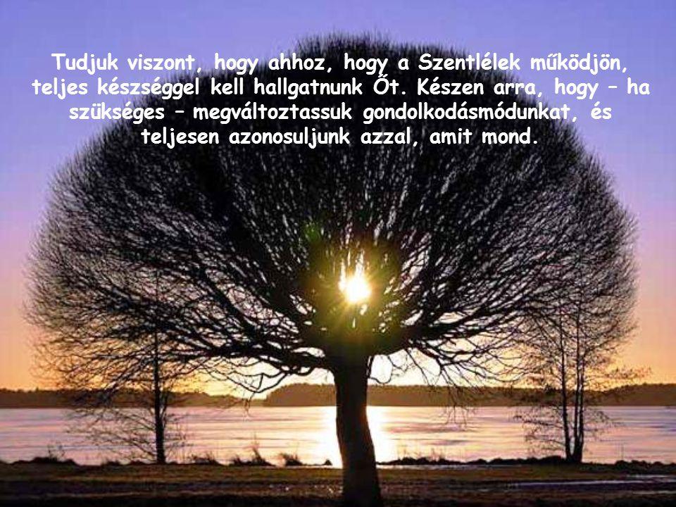 Tudjuk viszont, hogy ahhoz, hogy a Szentlélek működjön, teljes készséggel kell hallgatnunk Őt.
