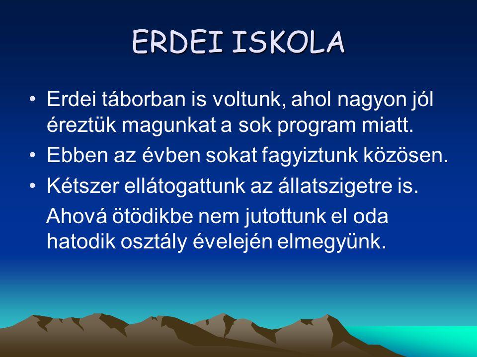ERDEI ISKOLA Erdei táborban is voltunk, ahol nagyon jól éreztük magunkat a sok program miatt. Ebben az évben sokat fagyiztunk közösen.