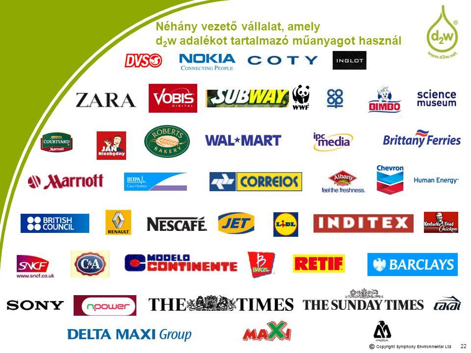 Néhány vezető vállalat, amely