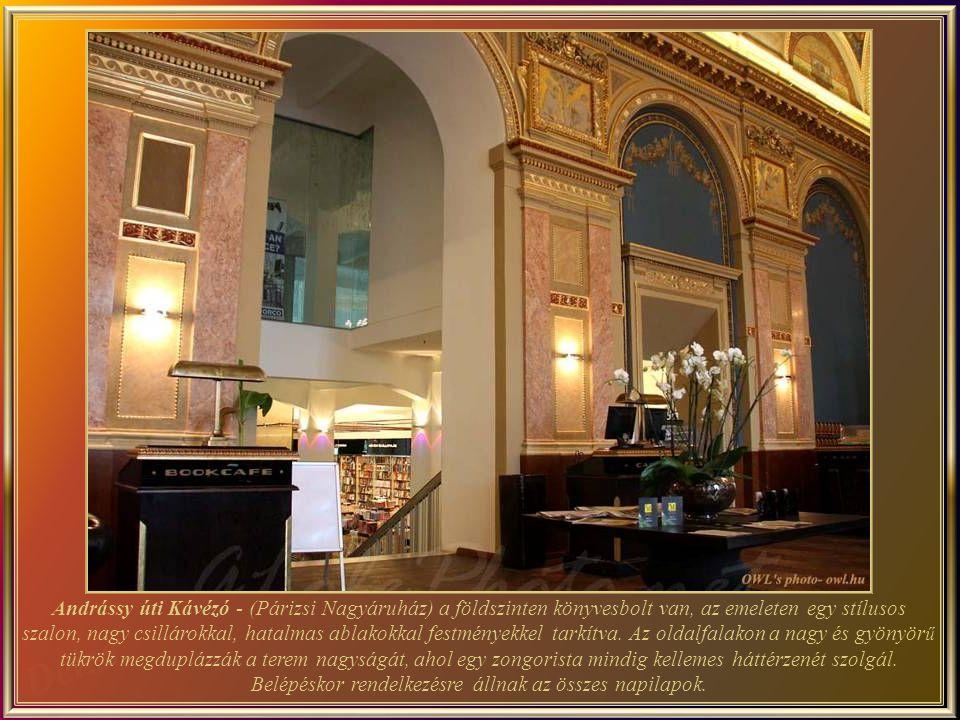 Andrássy úti Kávézó - (Párizsi Nagyáruház) a földszinten könyvesbolt van, az emeleten egy stílusos szalon, nagy csillárokkal, hatalmas ablakokkal festményekkel tarkítva.
