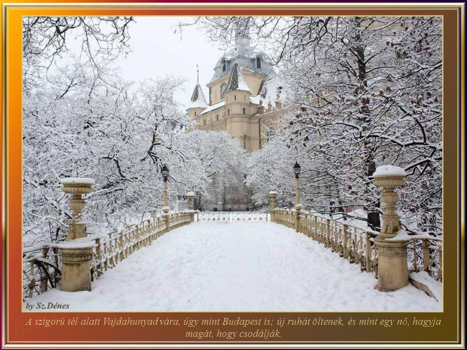 A szigorú tél alatt Vajdahunyad vára, úgy mint Budapest is; új ruhát öltenek, és mint egy nő, hagyja magát, hogy csodálják.