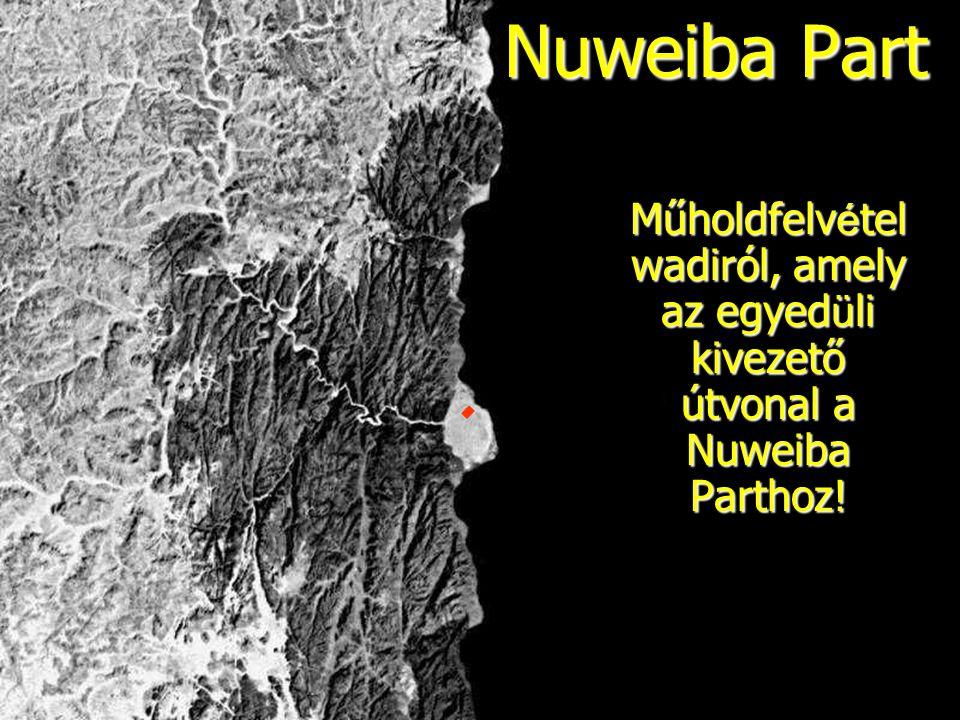 Nuweiba Part Műholdfelvételwadiról, amely az egyedüli kivezető útvonal a Nuweiba Parthoz!