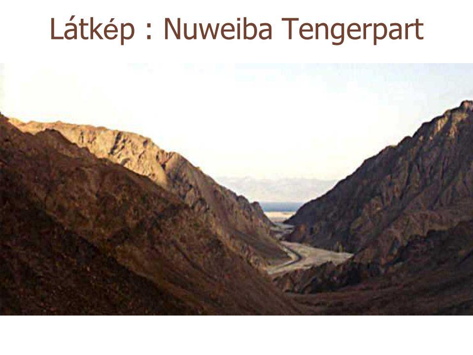 Látkép : Nuweiba Tengerpart