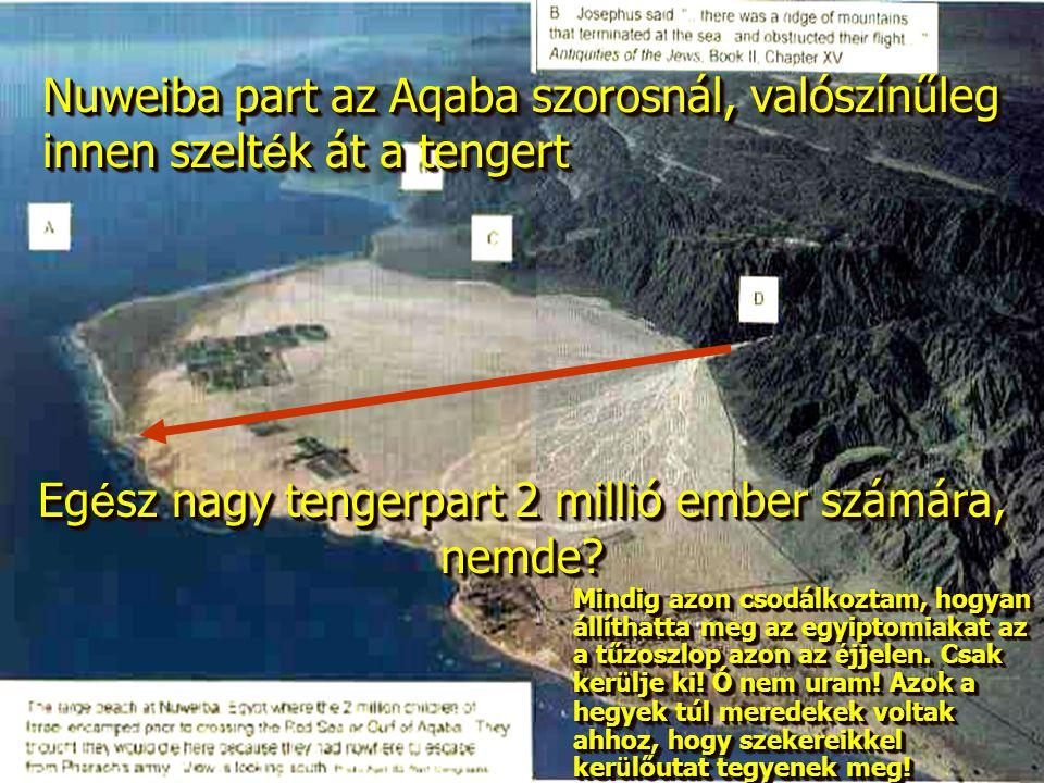 Egész nagy tengerpart 2 millió ember számára, nemde