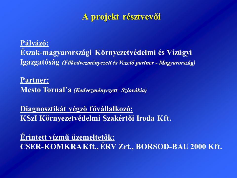 A projekt résztvevői Pályázó: