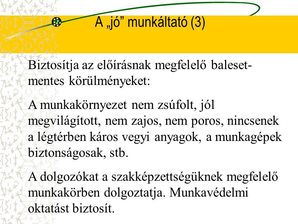 """A """"jó munkáltató (3) Biztosítja az előírásnak megfelelő baleset-mentes körülményeket:"""
