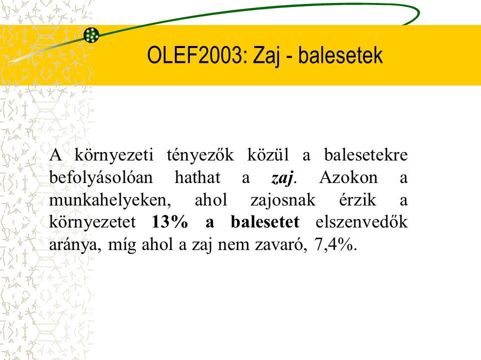 OLEF2003: Zaj - balesetek