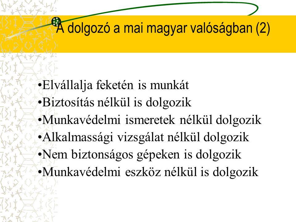 A dolgozó a mai magyar valóságban (2)