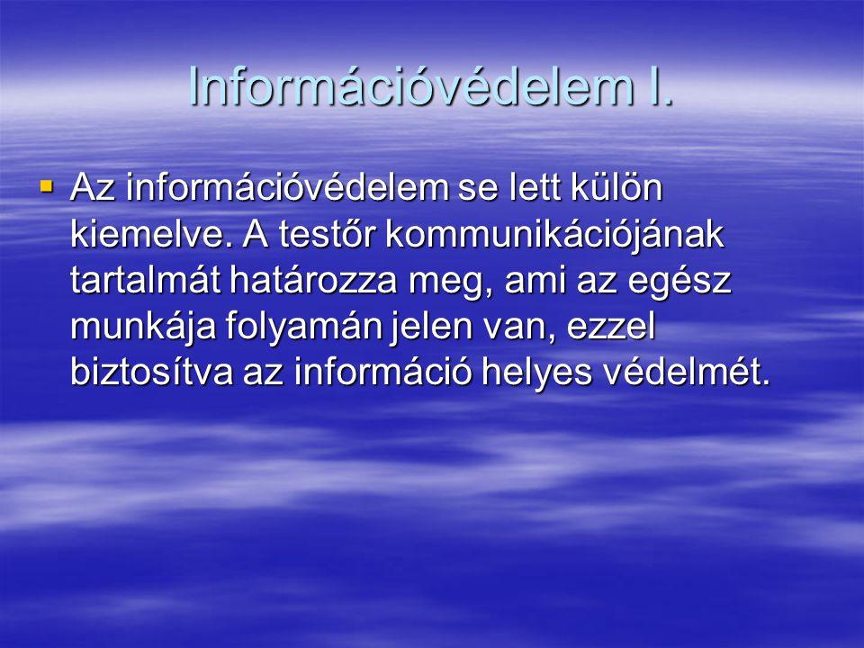 Információvédelem I.