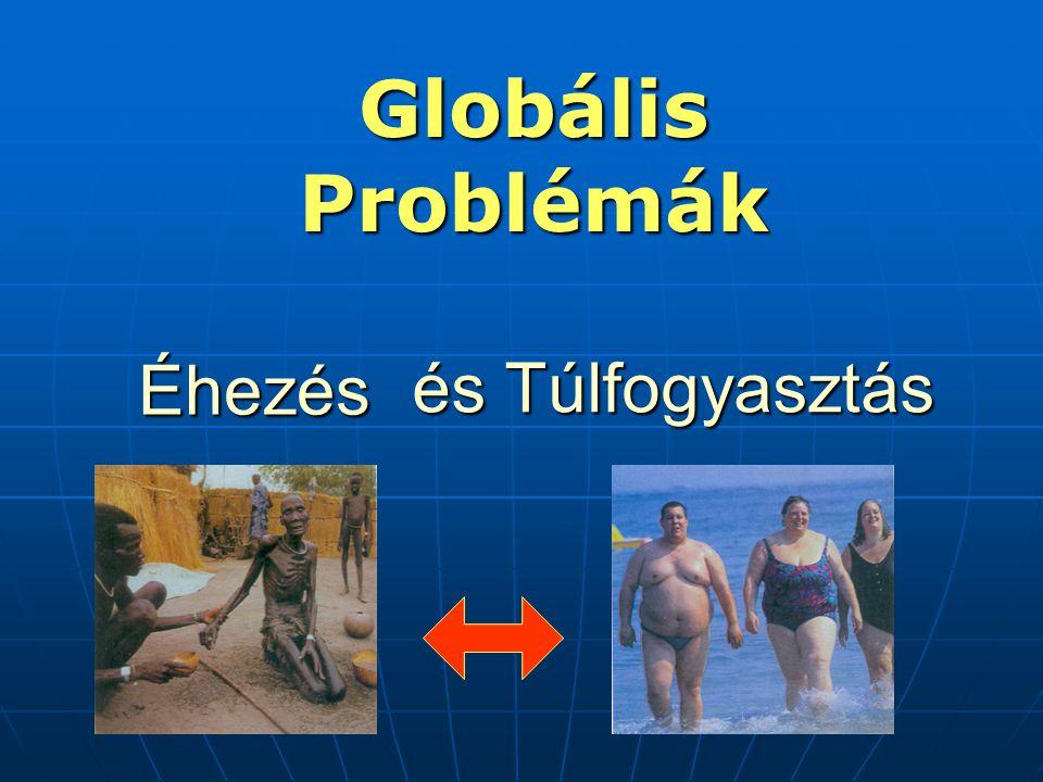 Globális Problémák és Túlfogyasztás Éhezés