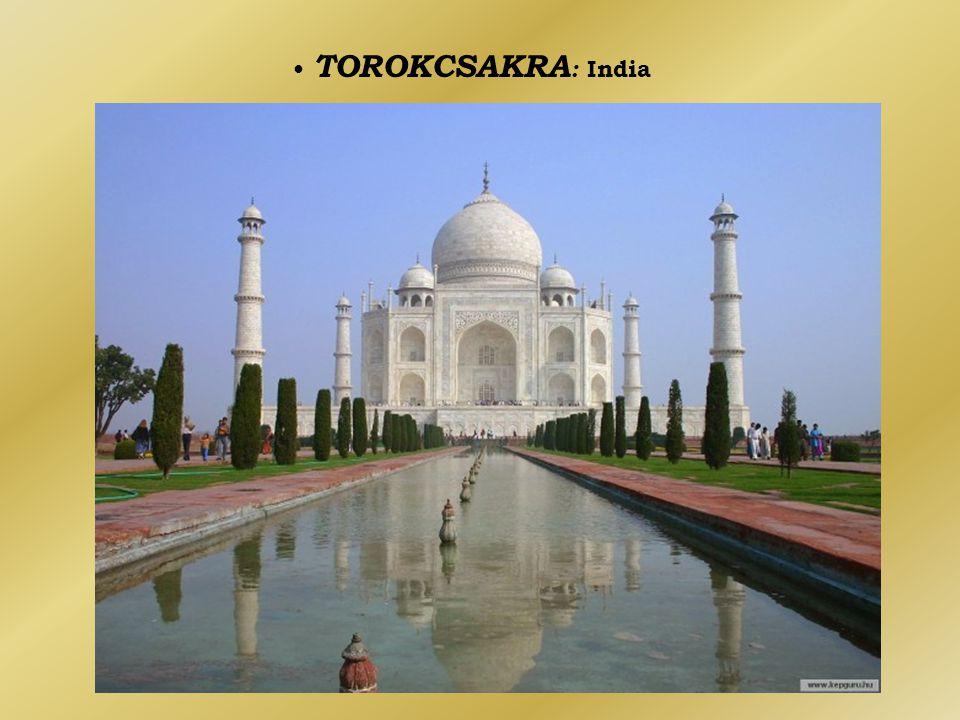• TOROKCSAKRA: India