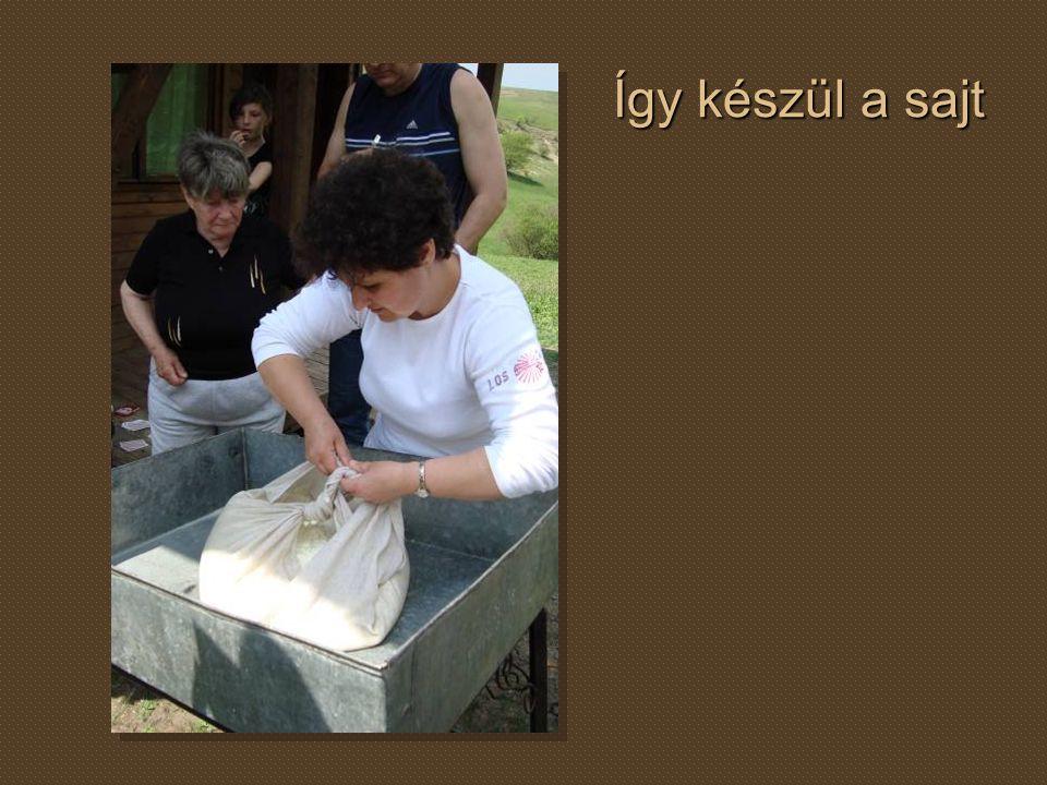 Így készül a sajt