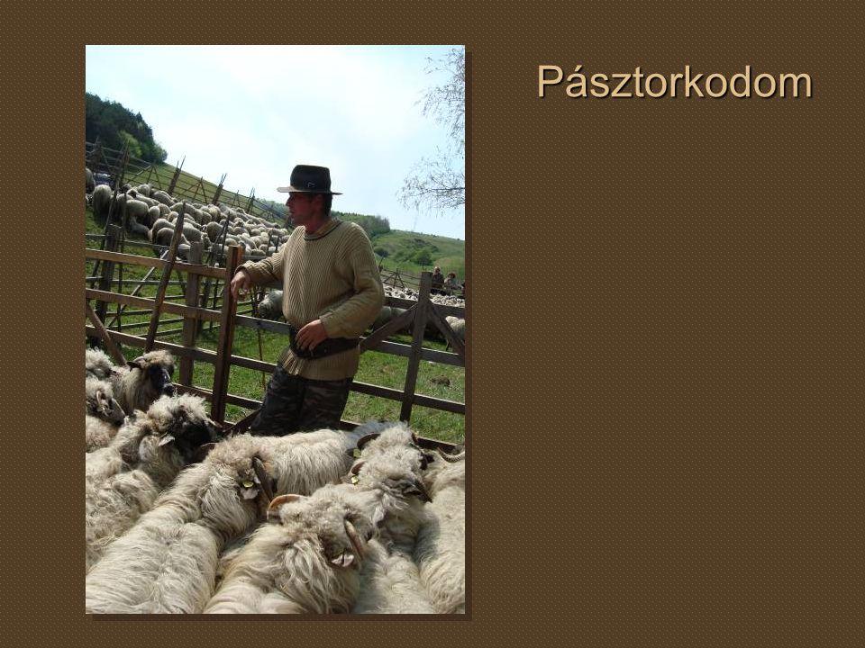 Pásztorkodom