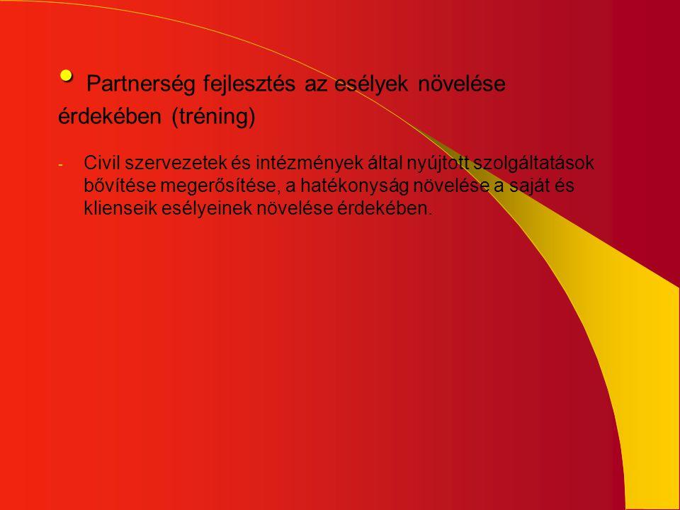 Partnerség fejlesztés az esélyek növelése érdekében (tréning)