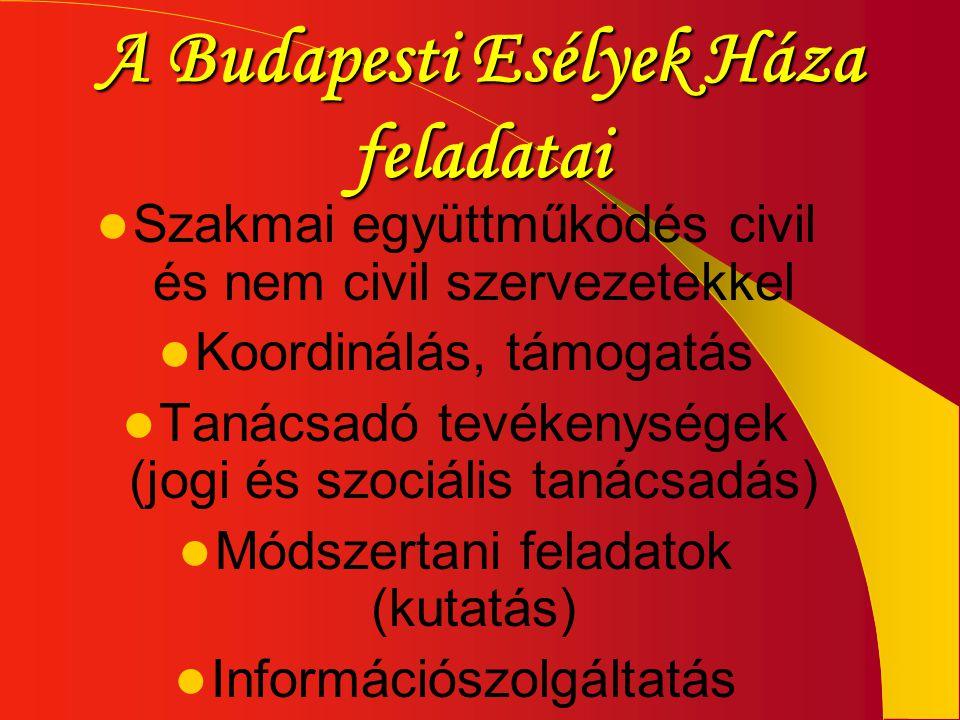 A Budapesti Esélyek Háza feladatai